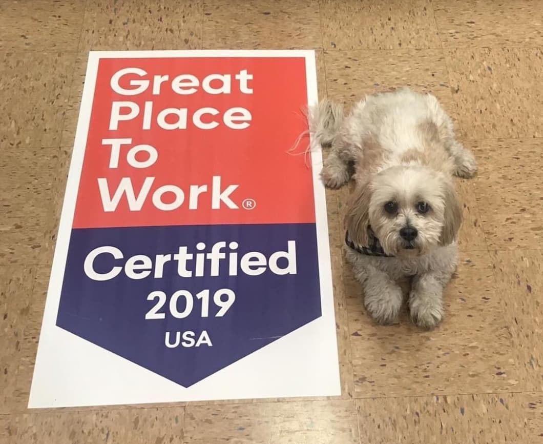 Five Places to Share Your Great Place to Work-Certified™ Company Badge